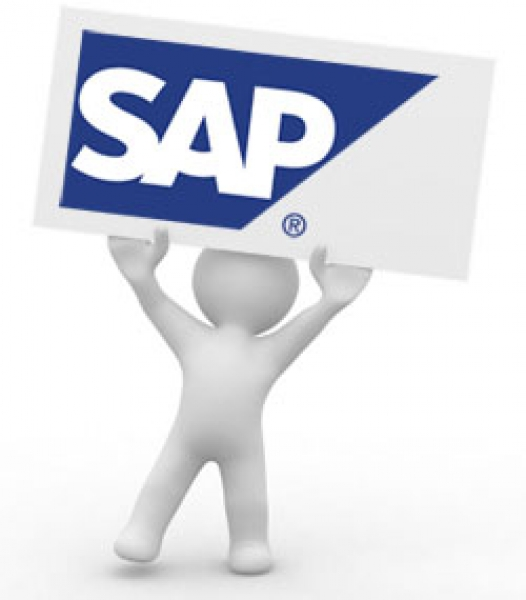 Senior SAP consultant.