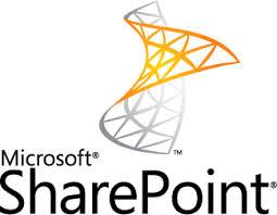 Sharepoint .Net Ontwikkelaar.