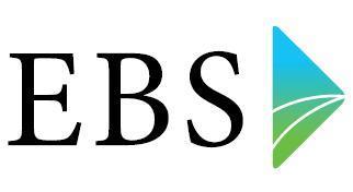 Senior EBS ontwikkelaar PT