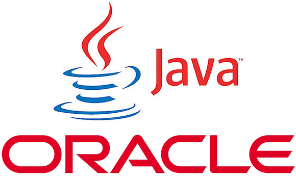 Senior Oracle / Java Developer