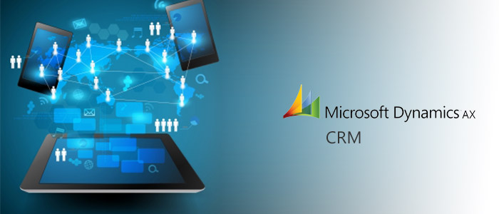 MS Dynamics CRM Ontwikkelaar