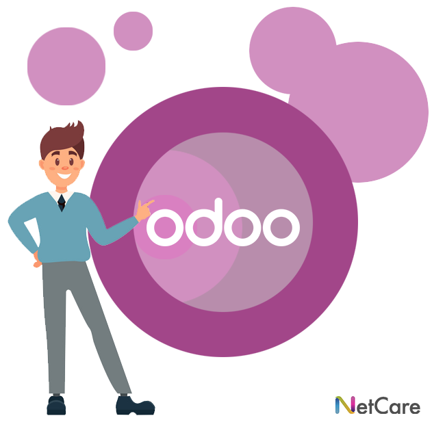Odoo ontwikkelaar